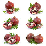 Collection of fresh pomegranate fruits Stock Images