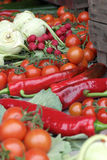 Collection of fresh produce Royalty Free Stock Photography