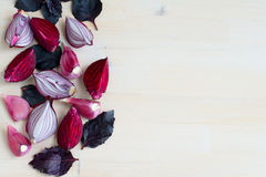 Collection of fresh purple vegetables on wooden background. Collection of fresh purple vegetables (beet, onion, garliс, basil) on wooden background Stock Photo