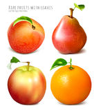 Collection of fresh ripe fruits. Stock Images