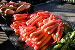 A collection of fresh vegetables including, Carrots and Sweet Po. A table display of fresh nutritious vegetables at a farmer`s market, includes, Carrots - Daucus Vector Illustration