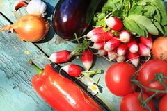 A collection of fresh vegetables Stock Images