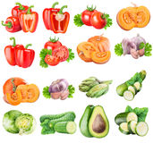 Collection of fresh vegetables on white background. With clipping path Stock Photo