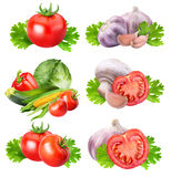 Collection of fresh vegetables on white background. With clipping path Stock Photos
