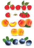 Collection of fruit and berries. Raspberry, peach, blueberry. Stock Photography
