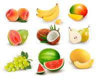 Collection of fruit and berries. Watermelon, grape, pear, banana, mango royalty free illustration