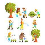 Collection of Fruit Farm Illustrations Royalty Free Stock Images