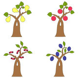 Collection of fruit trees Royalty Free Stock Photography