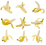 Collection of fruits banana Royalty Free Stock Images