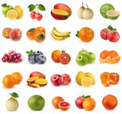 Collection of fruits and berries isolated on white background. Royalty Free Stock Photography