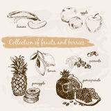 Collection of fruits and berries Royalty Free Stock Photos