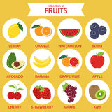 Collection of fruits icon, food vector illustration Royalty Free Stock Images