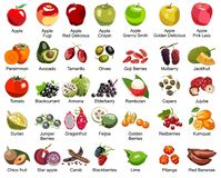 Collection of 35 Fruits icons – Part 2 - All types of apples and some tasty exotic fruits stock photography