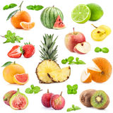 Collection of fruits Stock Photos