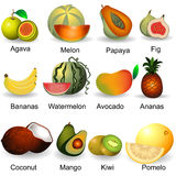 Collection of fruits 2 Royalty Free Stock Images