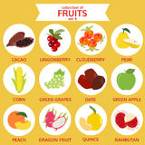 Collection of fruits set 4, food vector illustration, flat icon Royalty Free Stock Images
