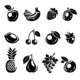 Collection of fruits set. Vector illustration Royalty Free Stock Photography