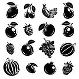 Collection of fruits set. Vector illustration Royalty Free Stock Photo