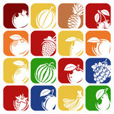 Collection of fruits set. Vector illustration Stock Images