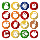 Collection of fruits set. Vector illustration Stock Photography