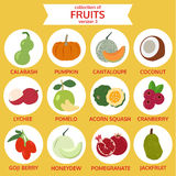 Collection of fruits version three, food vector illustration. Flat icon set royalty free illustration