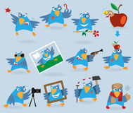 Collection of funny blue birds Royalty Free Stock Photo
