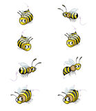 Collection of Funny Cartoon Cute Bee Stock Images