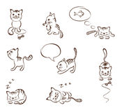 Collection of funny cats Stock Image