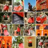 Collection of Fushimi Inari Taisha Shrine scenics Stock Image