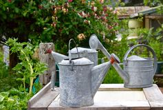 Gardening - Watering cans in a Community Garden royalty free stock photo