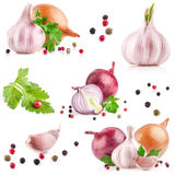 Collection of garlic and onion Stock Photography