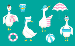 Collection with geese and beach accessories Royalty Free Stock Photos