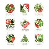 Collection of geometric tropical logo with leaves and flowers vector illustration