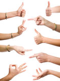 Collection of gestures. Female hands demonstrating various gestures on the white background Royalty Free Stock Image