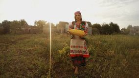 A girl in traditional Ukrainian folk clothes holds a pumpkin in her hands in a vegetable garden in a village in the evening. Collection, a girl in a traditional stock footage