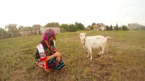 A girl in traditional Ukrainian folk clothes and a white goat in a field in a village. Collection, a girl in a traditional Ukrainian folk costume in the village stock footage