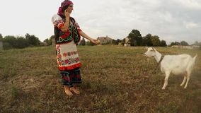 Girl in traditional folk Ukrainian handmade clothes offers an apple to a white goat in a field. Collection, a girl in a traditional Ukrainian folk costume in the stock video footage