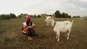 A young woman in traditional Ukrainian folk costume feeds apples themselves and white goat. Collection, a girl in a traditional Ukrainian folk costume in the stock footage