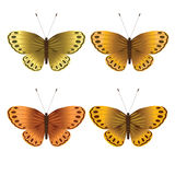 Collection of gold butterflies, design elements Stock Image