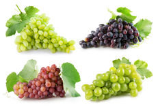 Collection of grapes isolated on the white background.  Stock Image