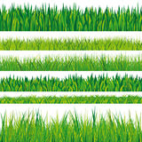 Collection of grass textures Royalty Free Stock Photography