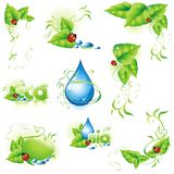 Collection of green design elements. Royalty Free Stock Images