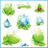 Collection of green designs Royalty Free Stock Image