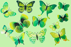 Collection Of Green Fantasy Butterflies. Collection Of  Green Fantasy Butterflies Stock Photo