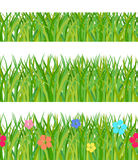 Collection a green grass Stock Photography