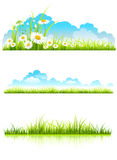Collection of green grass Stock Images