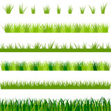 Collection of green grass,  illustration. Set of green grass,  illustration Royalty Free Stock Photo