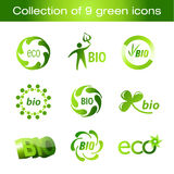 Collection of green icons. Collection of nine elegant green eco icons Royalty Free Stock Images