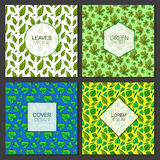 Collection of Green Leaves Poster Card Design Vector. Art Stock Images