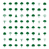 Collection of Green Trees. Vector icons. Royalty Free Stock Photos